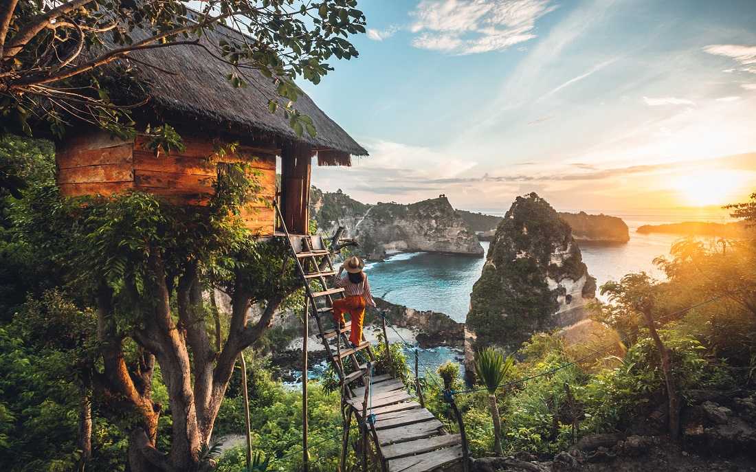 A tree house and the oceanic view